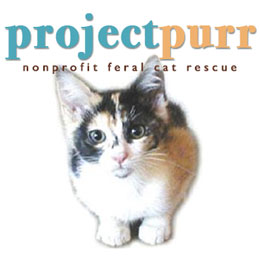 Project Purr