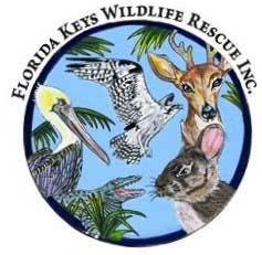 Florida Keys Wildlife Rescue, Inc.