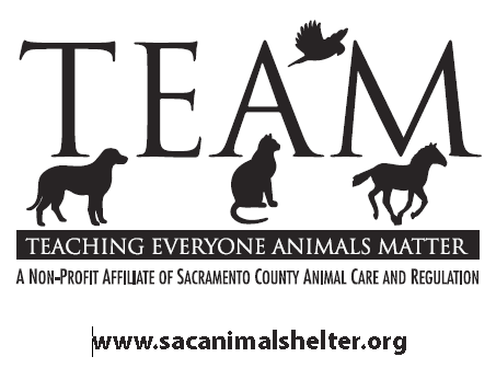 Teaching Everyone Animals Matter (TEAM)