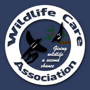 Wildlife Care Association