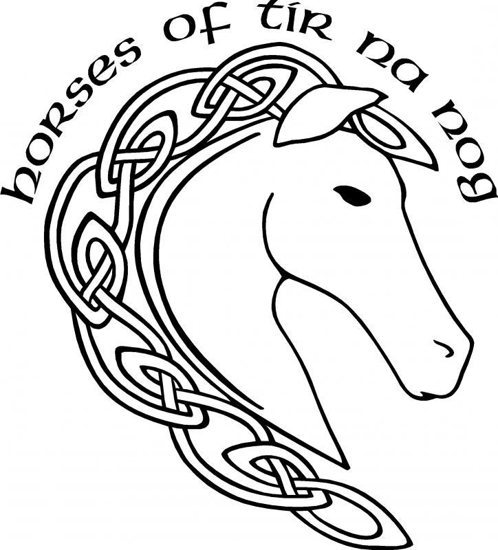 Horses of Tir Na Nog