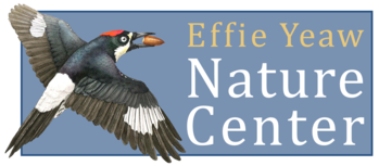 Effie Yeaw Nature Center